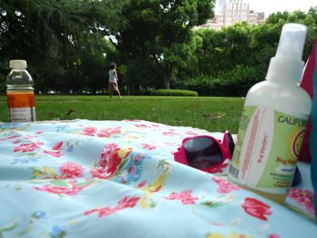 Summer_picnic_01